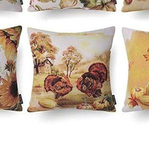 ⭐NEW⭐ - 🍂🌻Pumpkin/Turkey Pillow - 18X18